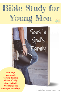 Sons in God's Family Bible Study for Young Men at LifeInTheNerddom.com