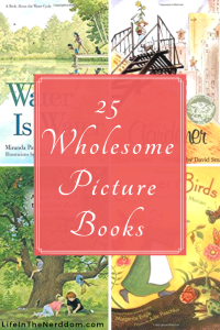 25 Wholesome Picture Books for Your Family at LifeInTheNerddom.com